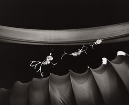 Martin P. Robinson puppet designs for Jackstraws in a Wind Tunnel